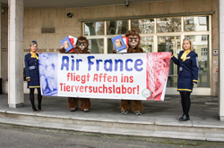 21. November 2014 - AG STG Petitionsübergabe Air France in Bern